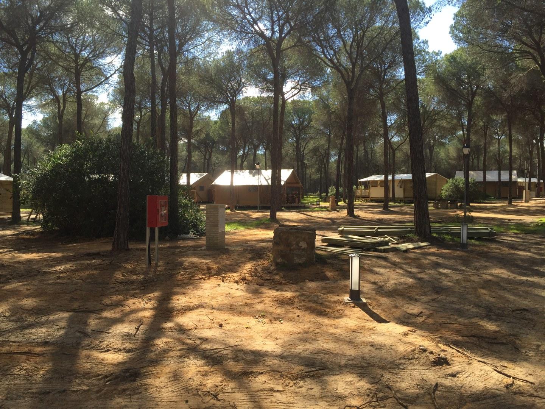 Ejecución de Camping Arrayán en Hinojos